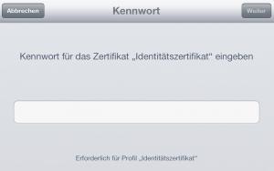 Installation auf iPad (4)